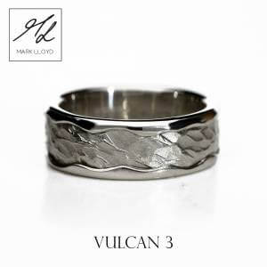 Vulcan 3_Platinum_Ring_Mark Lloyd