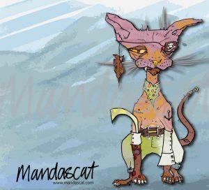 Mandascat-Pirate-Cat